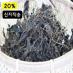 청정지역 지리산 취나물 (건취나물)-100g